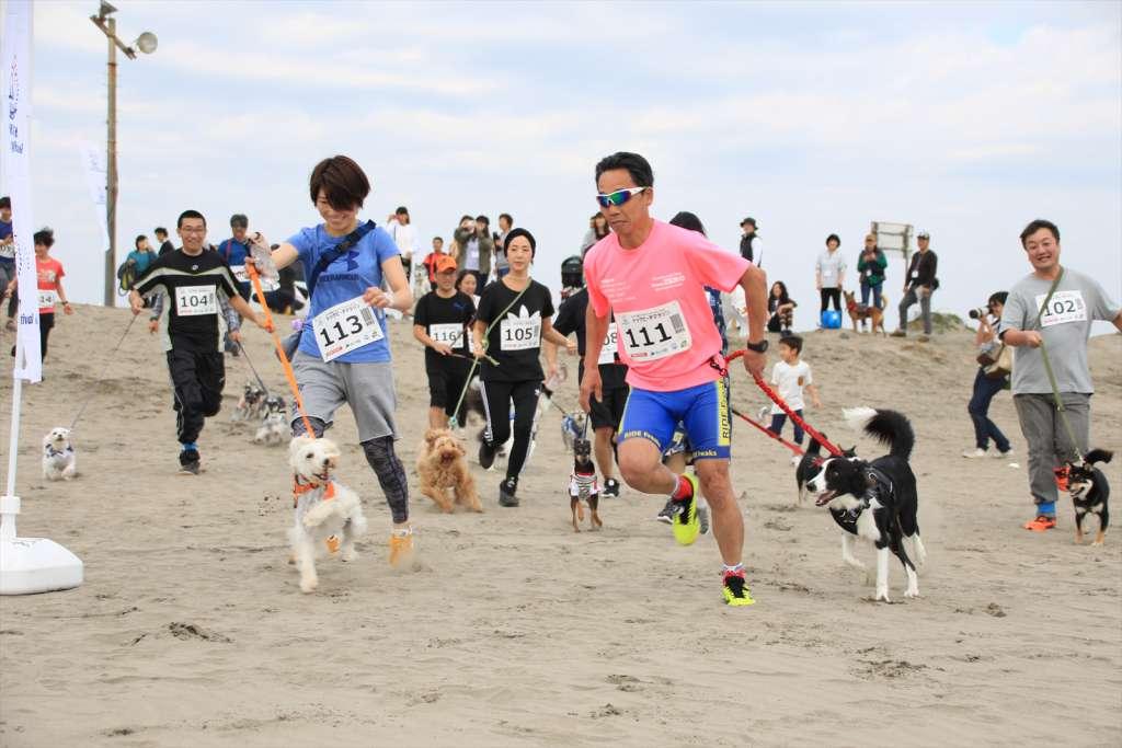 『九十九里ビーチドッグフェスティバル2』ドッグビーチマラソン
