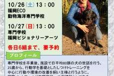 ドッグトレーナーの佐藤大樹氏を招いた個別ドッグトレーニングを10月26日、27日にリライフアニマルクリニックで開催!