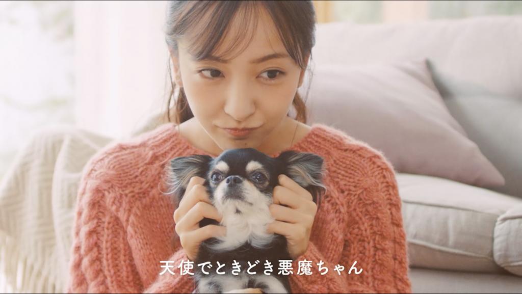 登場する愛犬(1)名前:ラムネ