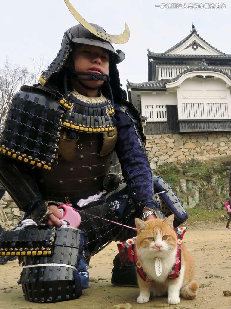 猫城主として正式デビューしたさんじゅーろー