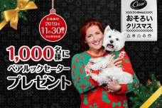 「シーザー(R)ペアルックセーター プレゼントキャンペーン」を実施!