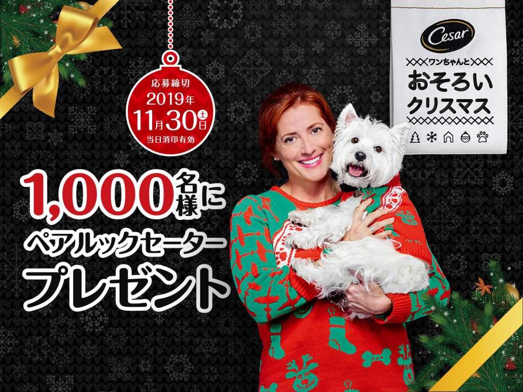 犬たちがセーターのデザイナーに!?「シーザー® ペアルックセーター プレゼントキャンペーン」を実施!