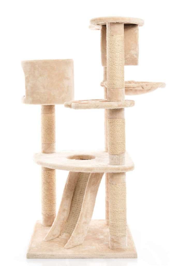 ラグドールには大きく安定感のあるキャットタワーを用意する