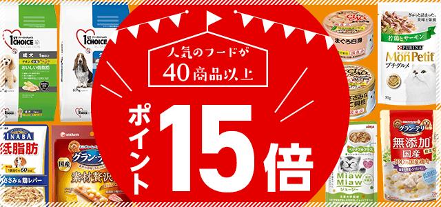 15周年記念 人気フードポイントアップ