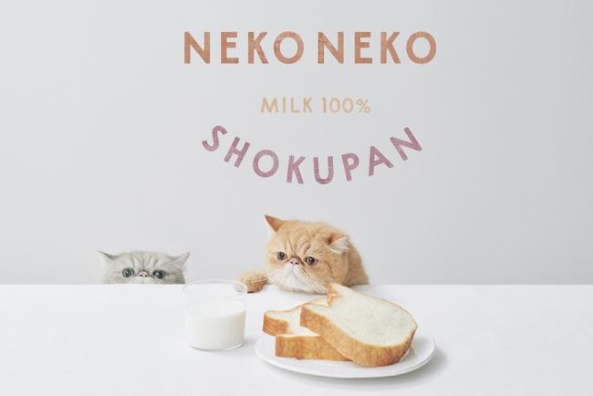 【広島県に初出店】関東・関西エリアに続いて、ねこの形の高級食パン専門店「ねこねこ食パン」が新規オープン!