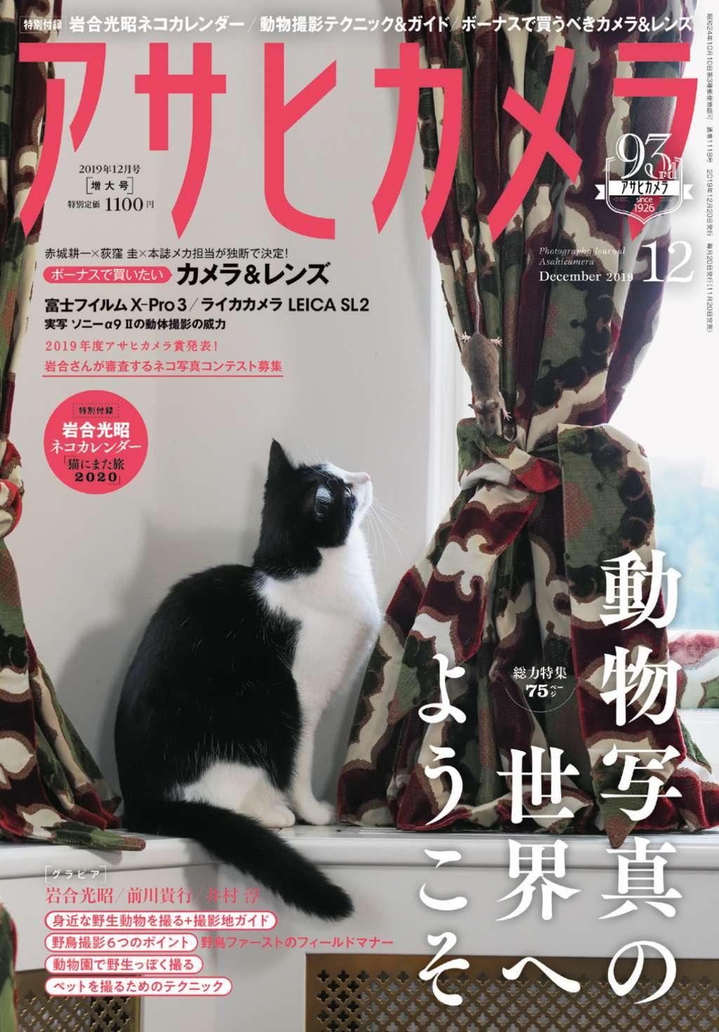 岩合光昭さんネコカレンダーはすべて新作撮り下ろし! アサヒカメラ12月号は「ネコ目線」写真が表紙
