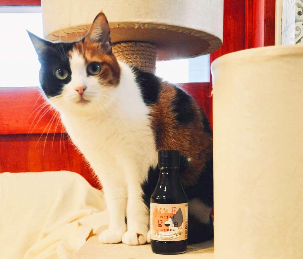 「三毛猫醤油」は濃口醤油なので普通にだし入り醤油として