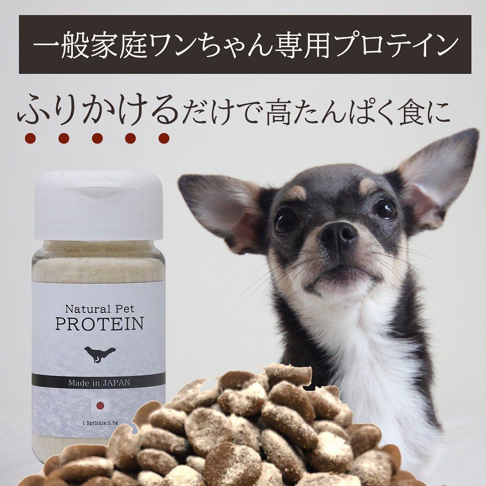 ワンちゃん専用プロテイン「ナチュラルペットプロテイン」新発売 気軽に高たんぱくのドッグフードに!