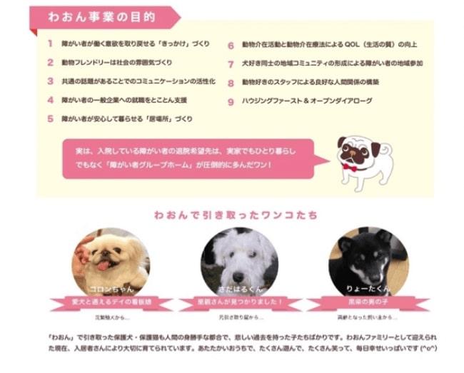 犬・猫の引き取り及び負傷動物等の収容並びに処分の状況