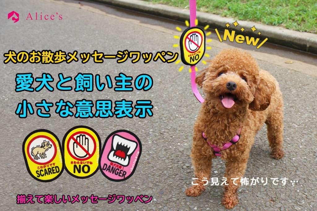 【日本初】犬の飼い主様のお散歩の時の不安の声に応えた新商品『犬のお散歩メッセージワッペン』1月22日新発売