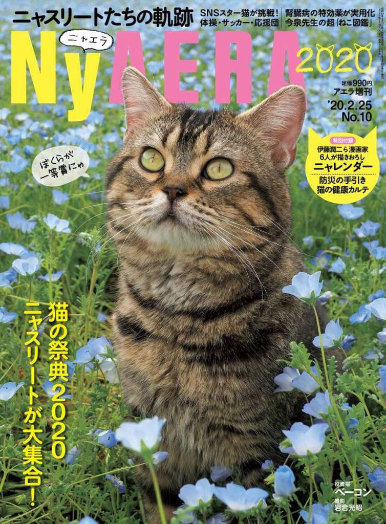 今年もやります! 一冊まるごと猫「NyAERA(ニャエラ)」2020年版はニャスリート大集合! 表紙は岩合光昭さん撮影の役者猫ベーコン