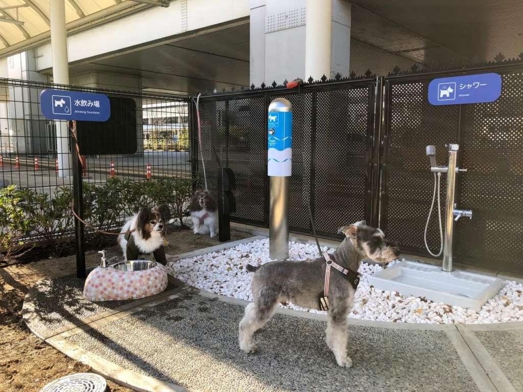大阪国際空港内に国内空港初となる「愛犬専用トイレ」を設置