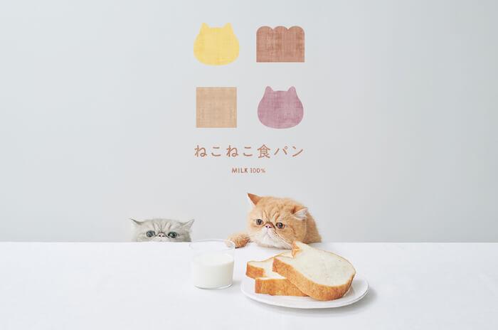 【大好評のため限定復活!】ねこの形の高級食パン専門店「ねこねこ食パン」が、ねこねこパックを3月20日(金)より再販!