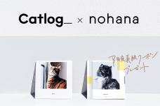 『Catlog®(キャトログ)』と、家族向けフォトブック作成アプリ『ノハナ』がコラボキャンペーンを開始!Catlogオリジナル表紙デザインのフォトブックが1冊無料に。