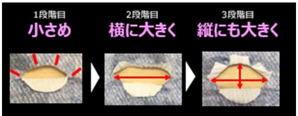 モレを防ぐ調整可能なシッポ穴とパワフル吸収体