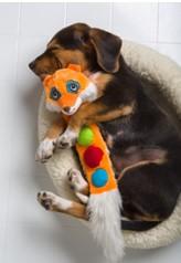 『ファニーフレンズ』 愛犬をなごませる愛らしい表情の動物達
