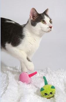『マカロンマウス グリーン/ピンク』 マカロン型のかわいいマウス