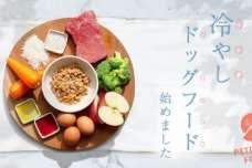 犬の熱中症予防は食事から。人間も食べられるドッグフード『PETOKOTO FOODS』が、冷やしドッグフードを始めました。