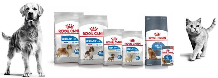 90%以上の犬と猫*がダイエットに成功!ロイヤルカナン ジャポン「ライトウェイトケア」リニューアル新発売