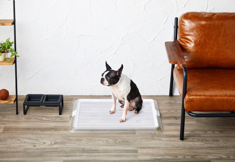 部屋を選ばないお洒落なインテリアトイレ(犬向け)「ペットレークリアメッシュ」を販売開始
