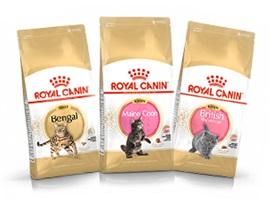 ロイヤルカナン公式通販サイト「マイ ロイヤルカナン」限定! 特定猫種フード新発売記念キャンペーンを開始
