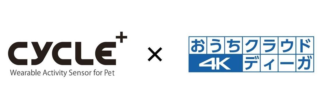犬猫用 活動量計『プラスサイクル』とPanasonic 『おうちクラウドディーガ』が連携開始