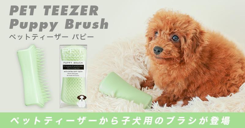 ペットティーザーより子犬用ブラシが新登場!「ペットティーザー パピー」11月26日発売