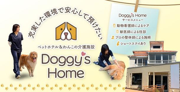 全ての年齢の愛犬へ充実した環境で安心できるケアを提供  「Doggy's Home」12月に新規オープン&内覧会実施