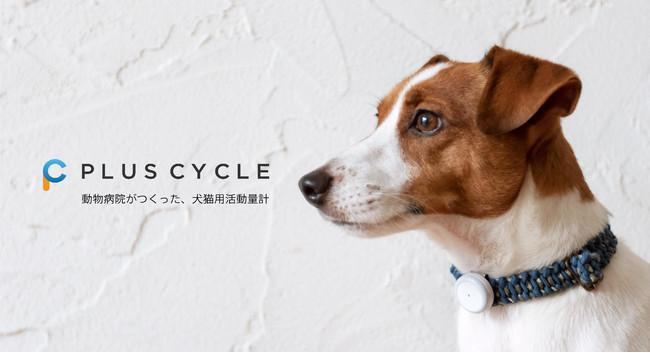 犬猫用 活動量計『プラスサイクル』が、次世代型ショールーム『蔦屋家電+』へ展示販売をスタート!