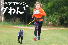 ~愛犬と一緒に走るオンラインペアマラソン~ドッグわん