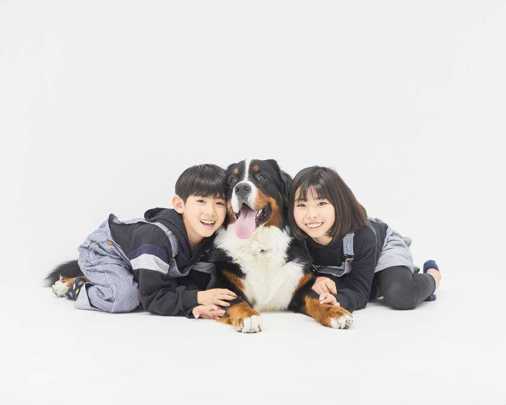 オープンから5ヶ月、442頭の家族写真を撮影した犬専門フォトスタジオ 「今をカタチに残したい」飼い主さんへ「犬の等身大フォトサービス」も