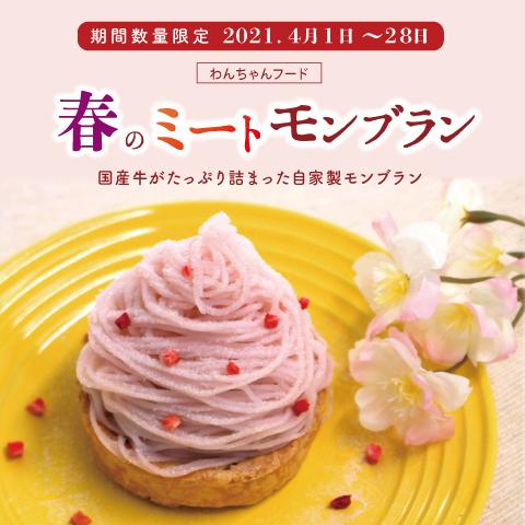 おうちでわんちゃんフード!桜色モンブラン『春のミートモンブラン』期間限定発売のお知らせ!