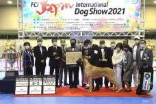 FCI ジャパンインターナショナルドッグショー2021