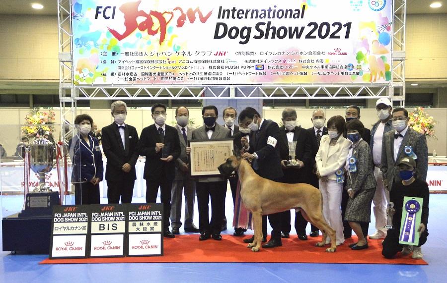 ロイヤルカナン ジャポン特別協賛 日本最大規模のドッグショー「FCI ジャパンインターナショナルドッグショー2021」 開催レポート
