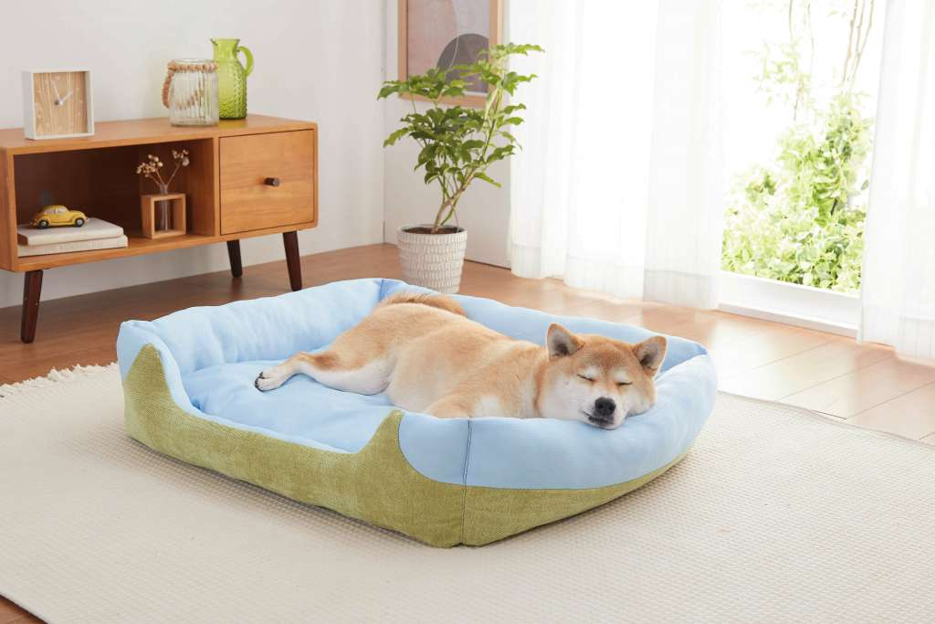 暑さから犬猫の体を守る、累計12,000個を販売した 「ソフトクールマット」シリーズより新商品2種が発売!