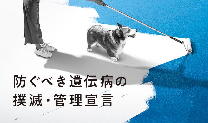 ペット保険のアニコム、防ぐべき遺伝病の撲滅を宣言