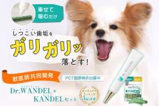 累計出荷本数18万本突破の犬用デンタルジェル「Dr.WANDEL(ドクターワンデル)」が、日本マーケティングリサーチ機構の調査でNo.1を獲得!