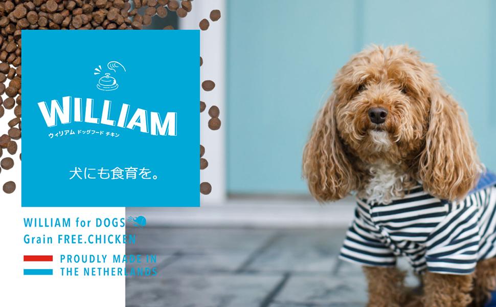 【犬にも食育を】マッサンペットフーズから初のドッグフード「ウィリアムドッグフード チキン」が新発売!