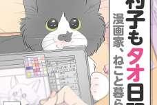 漫画家、ねこと暮らす ~猫も杓子もタオ日記~