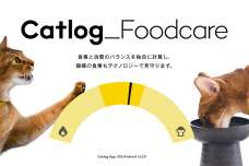 Catlog®(キャトログ)12億件を超える猫様データを活用し、猫様のお食事をテクノロジーでサポートする『Catlogフードケア』をリリース!