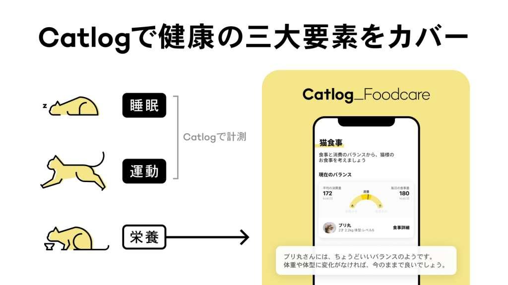 猫様ごはんと消費のバランスをサポートするCatlogフードケア『猫食事』機能