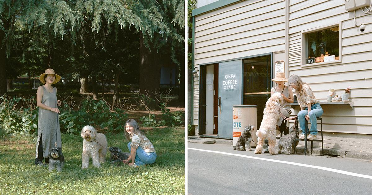 Qualumが届くことで、犬も人間もハッピーな気持ちになりますように
