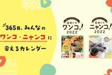 """""""みんなでつくる""""日めくりカレンダー『日めくりワンコ!®2022』『日めくりニャンコ!®2022』を10月1日に販売開始"""